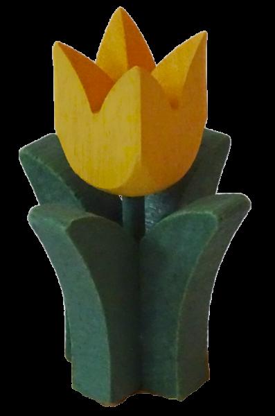 Tulpe groß in gelb