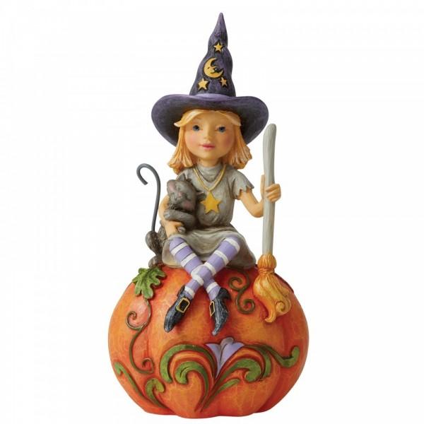 Frequent Flyer Witch on Pumpkin / Vielflieger - Hexe auf Kürbis