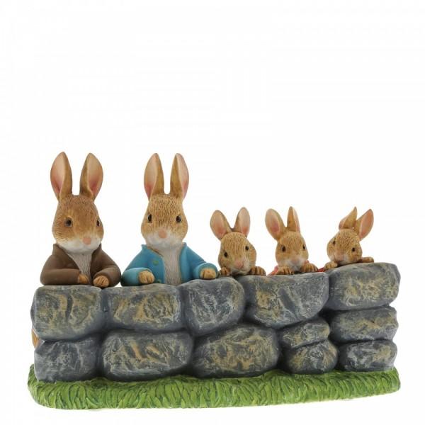 Beatrix Potter, Beatrix Potter Collection, Peter Rabbit, Benjamin Bunny, Flopsy, Jemima Puddle-Duck, Jeremy Fisher, A29859, Benjamin, Peter, FLopsy, Mopsy and Cotton Tail