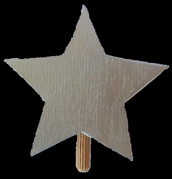 Stern silber